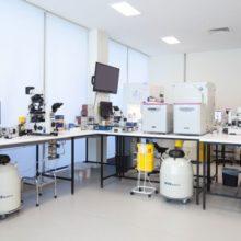 City Fertility Melbourne laboratory